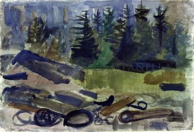 186 Forest scene-Monhegan.jpg