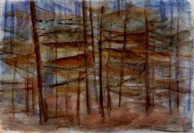 190 Fall Forest.jpg