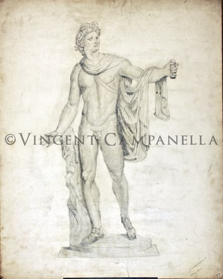 300B Male torso.jpg